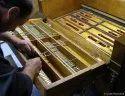 Harmonium Repairing Service
