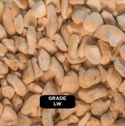 Raw Natural LW Broken Cashew Nut