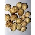 Terminalia Bellirica  Behada Seed