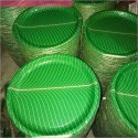 Eco Friendly Disposable Plates
