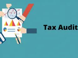 1 Year Income Tax Audit, Pan India