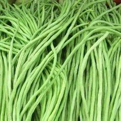 Fresh Beans, A Grade, Packaging Size: 10 Kg