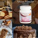 Blossom Tylose Powder Binding Agent for Fondant