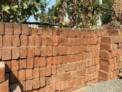 Clay Red Bricks 6 Inch