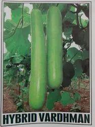 Green hybrid Vardhman, Packaging Type: Pp, Packaging Size: 50g