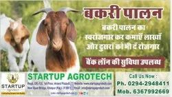 Agricultural Development Project Consultancy Services