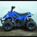 Blue 80cc Junior ATV