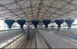 Poultry Feed Trolley System