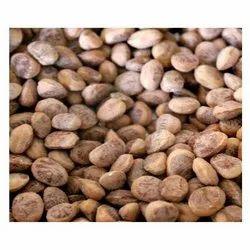 Cudpahnut Dry Nut, Packaging Type: Vacuum Bag, Packaging Size: 1 Kg