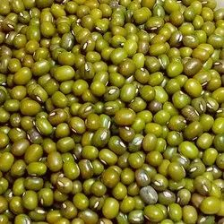 Green Sabut Moong Dal, High in Protein, Packaging Size: 30 Kg