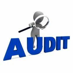 Online Tax Audit Services