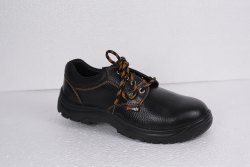 Arrow Single Density Shoes