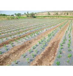 Advanced Land Farming