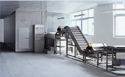 Sweet Corn Processing Machinery