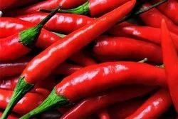 Fresh A Grade Red Chilli, Packaging Size: 50 kg