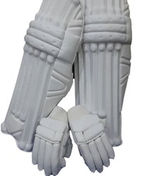Cricket Gloves and Leg Guard