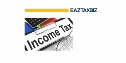 CA Income Tax Consultancy Service, In Pan India