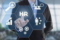 HR Consultancy Services, Local