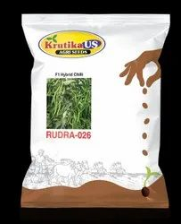 Krutika Dried Hybrid Green Chili Seeds, Packaging Type: Packet, Packaging Size: 10 G