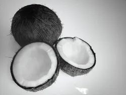 A Grade Solid Mature Black Coconut, Packaging Size: 50 Kg
