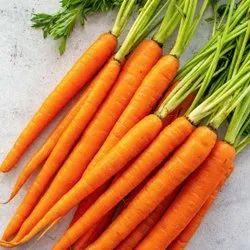 A Grade Organic Fresh Red Carrot, Packaging Type: Net Bag, Packaging Size: 20 Kg (Maximum)