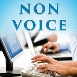 BPO Non Voice Services