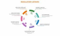 Regulatory Approval Services