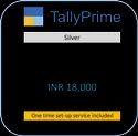 Tally Prime Silver, Single User, Windows 10
