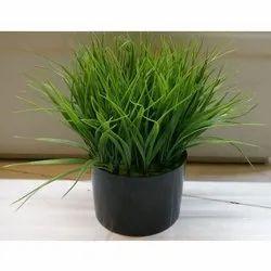 Plastic Black Yucca Artificial Potted Plant