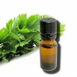 Celery Seeds Oil