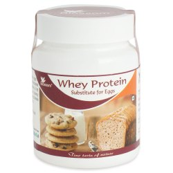 Blossom Whey Protein Substitute For Eggs