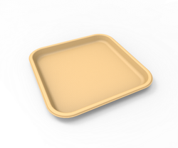 Compostable Bagasse Plate