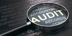 Consulting Firm One-Time Company Auditing Services