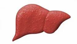 Liver Tonic Syp