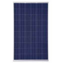 Luminous 330 W 24V Polycrystalline Solar Panel