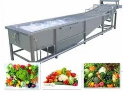 Fruits & Vegetable Processing Equipment