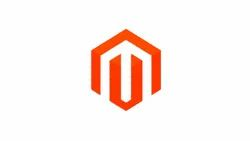 PHP/JavaScript Dynamic Magento Website Design And Development, With 24*7 Support