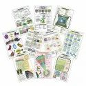 Botany Charts-I Plant Kingdom, Cell, Plant Tissues, Mitosis, Meiosis, Monocot, Dicot Stem, Root