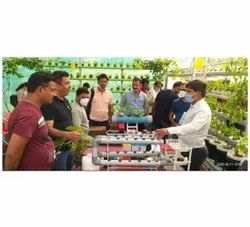 8 Hours 20 Hydroponics and Aquaponics Corporate Training, Location: Lucknow