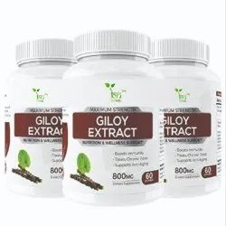 Moringa Oleifera Herbal Giloy Capsules, Packaging Type: Bottle, Packaging Size: 60 Tablets
