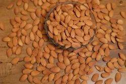 Almond Nuts, Packaging Type: Sacks, Packaging Size: 25kg