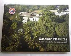 English Woodland Pleasures