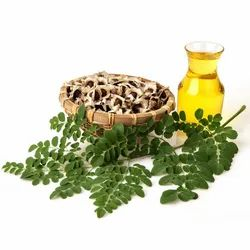 Moringa pure Oil