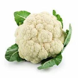 A Grade Fresh Cauliflower, Carton, 20 Kg