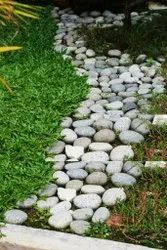 Natural Pebbles Stone for Walking & Landscaping