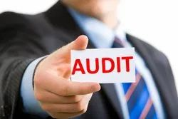Cost Control Auditing Service, Specific Instrumentation