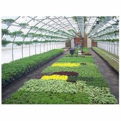 Agriculture Tunnel Greenhouse Structure