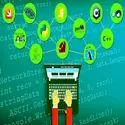 Software Developer Services