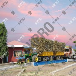 Sugar Factory Weighbridge