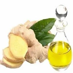 Ginger Oil Project Report Consultancy